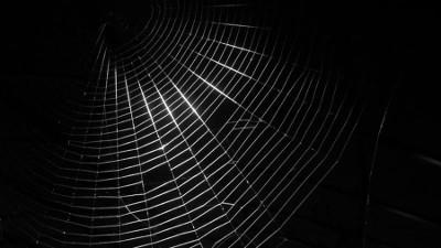 Dark web - onion service