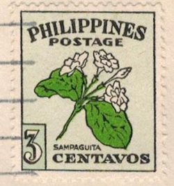 Stamp featuring the sampaguita flower